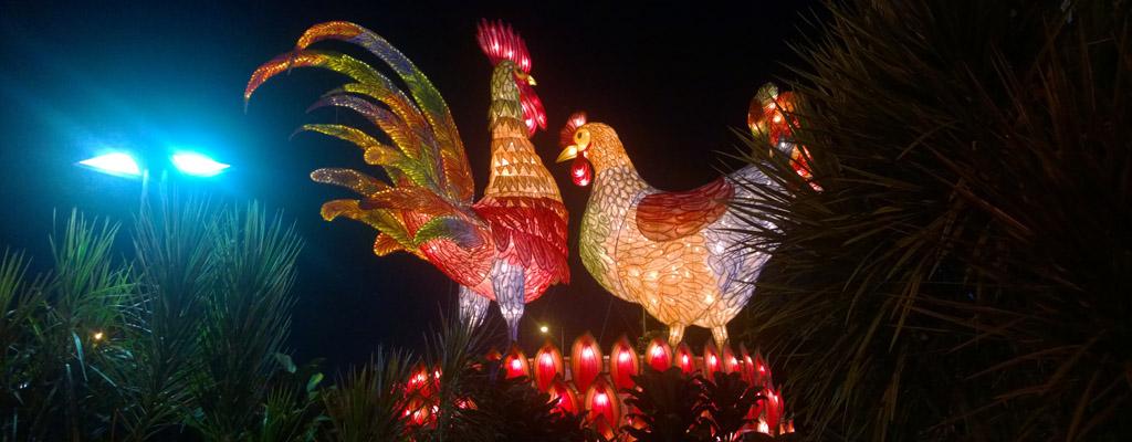Yuk Sambut Investasi di Tahun Ayam Api